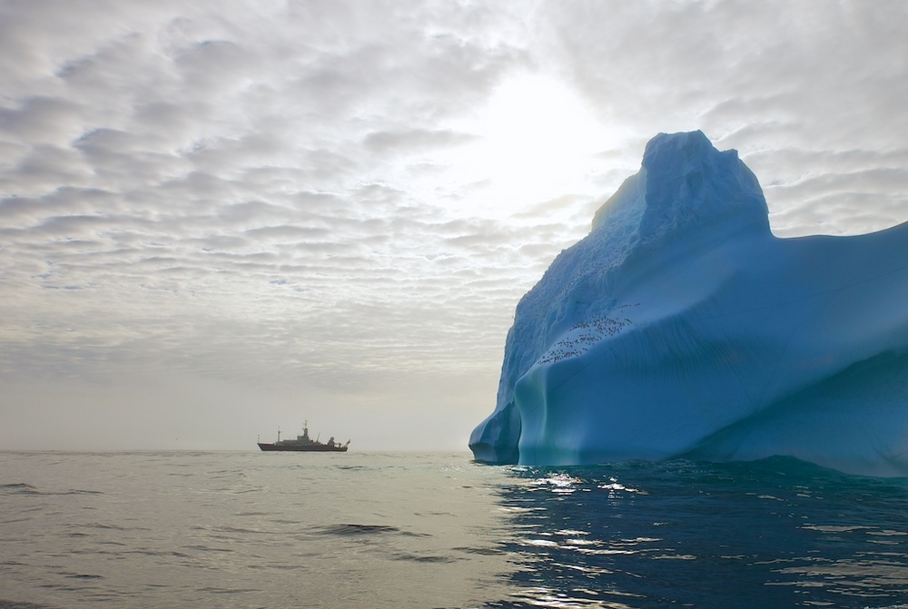 The American research vessel Knorr by the shores of Greenland. Photograph: Sindre Skrede