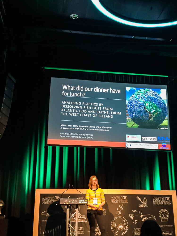 "Adriana Neeltje de Vries, a second year master´s student, gave a talk about her study on microplastics in the guts of fish in the Westfjörds of Iceland titled, ""What did our dinner have for lunch?: Analyzing plastics by dissolving fish guts from Atlantic cod, Gadus morhua, and saithe, Pollachius virens, from the west coast of Iceland""."
