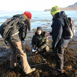 Field work on the beach for the course Coastal and Marine Ecology. Photo: Lucian Renita.